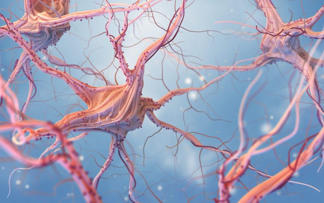 Alzheimer: la vita va avanti! Spunti per una nuova visione